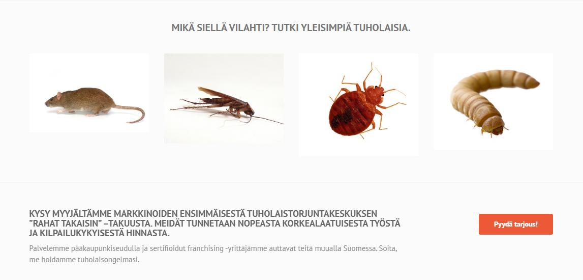 Tuholaistorjuntakeskuksen Google Ads -mainonnan kehittäminen sekä hakukoneseuranta